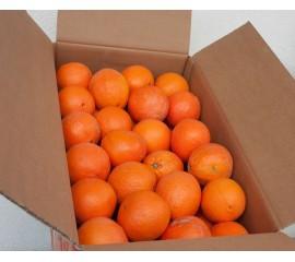 1 Oranges Box 16-19 Kg