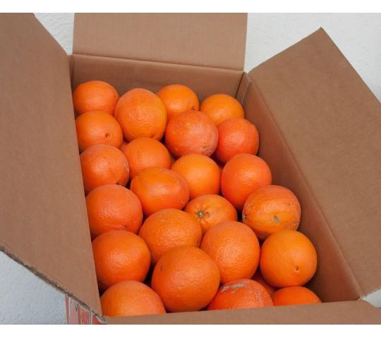 1 Oranges Box 23-25 Kg
